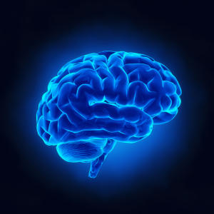 Traumatic Brain Injury (TBI